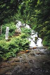 Shiragane Fudou No Taki Fall (Gai) Tags:    biei hokkaido japan   summer  country  green  plant  nature   tree   water  stream  river  fall  valley