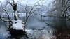 Seven Lakes / Bolu - Turkey (Engin Calisir) Tags: snow ice fog lake winter december light trees park landscape bolu yedigöller seven lakes outdoor