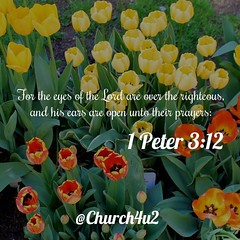 """1 Peter 3-12 """"For the eyes of the Lord are over the righteous, and his ears are open unto their prayers:"""" (@CHURCH4U2) Tags: bible verse pic"""