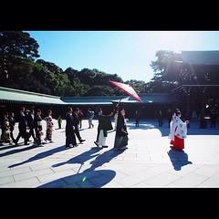 在明治神宫遇到日本的神道婚礼,作为婚礼摄影师的我当然要大拍特拍了 婚礼的形式让人想起《悠长假期》里被放鸽子的山口智子还有木呐寡言的木村拓哉,当初这两人加上竹野内丰、松隆子、稻森泉,最美时刻的超萌广末凉子,真是日剧史上第一神剧