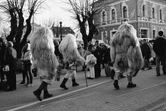 where the wild things are (isadora.jpg) Tags: festival spring hungary beast tavasz pagan magyarország mohács pohod fesztivál busójárás farsang poklade sokác bušara
