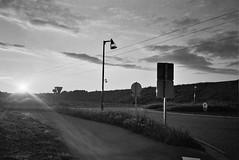 (CroytaqueCie) Tags: ilfordhp5 argentique filmphotography fujidl300 believeinfilm