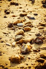Random stones (GEHPhotos) Tags: ocean sea abstract beach nature sand random unitedkingdom stones haylingisland shoreline hampshire shore southcoast canoneos6d ef70200mmf28lisiiusm