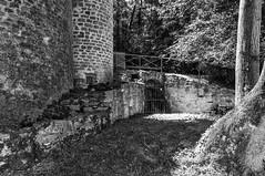 Vestige du chteau de la Tourelle (DavidB1977) Tags: bw france nikon nb chateau iledefrance 18105 seineetmarne d90 tourelle chaumesenbrie maurevert