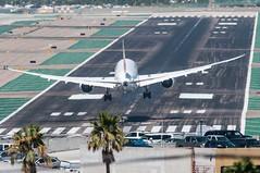 Dreamliner past the keys (SBGrad) Tags: nikon san plasticfantastic nikkor jal japanairlines 2014 787 lindberghfield alr ksan tc17eii 300mmf28dii 788 dreamliner aerotagged aero:man=boeing aero:series=800 aero:airline=jal 787800 d300s aero:airport=ksan aero:model=787 ja830j aero:tail=ja830j