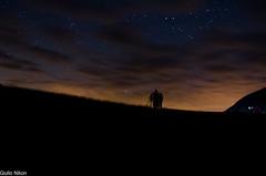 Contest_GiulioNikon_18 mm_01 (Giulio Gigante) Tags: sky mountain colors stars nikon contest cielo notte giulio stelle campoimperatore d5100 giulionikon