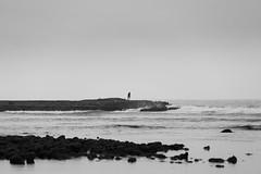 The Sea Watcher (aminefassi) Tags: portrait blackandwhite bw copyright beach fog day alone morocco plage  rabat 6d sablesdor ef70200mmf28 temara aminefassi aminefassicom
