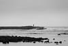 The Sea Watcher (aminefassi) Tags: 6d aminefassi aminefassicom beach plage portrait rabat sablesdor temara morocco alone blackandwhite bw copyright ef70200mmf28 fog day 海 login