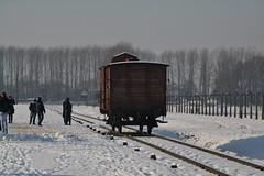 Auschwitz (027)