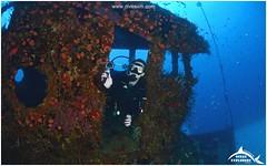 August 27, 2014 12:01 PM (Ocean Explorers St. Maarten) Tags: borderfx