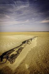 Mer - planche d'pave (GLX PHOTOGRAPHIES AMATEURS) Tags: mer sable bois hemme marck pave flott tremp