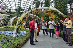 Orchid Extravaganza #5 (chooyutshing) Tags: singapore workinprogress floraldisplay marinabay flowerfield baysouth flowerdome gardensbythebay orchidextravaganzaatgardensbythebay