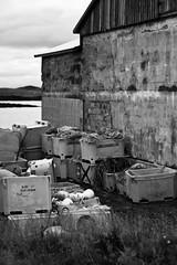 Flateyjarhfn (Hilla pilla) Tags: urban bw iceland team harbour turban sumar sland 2014 vinir flatey breiafjrur
