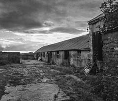 Dun Farming (bakermike123) Tags: wales mono farm august vale 2014 llanharan