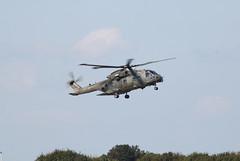 ZJ136 U (aitch tee) Tags: southwales merlin helicopters raf valeofglamorgan zj136 modstathan natosummitsecurity