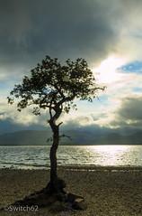 IMG_3264 (Switch62) Tags: bay scotland loch lomond millarochy 2014schotland