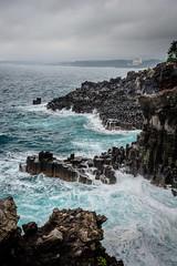 Jeju Island, Daepo Jusangjeolli Cliff (kaiserjuergen) Tags: korea jeju jejudo  daepojusangjeollicliff