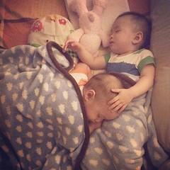 กลางวันตีกัน แต่กลางคืนนอนซบกัน พี่น้องคู่นี้