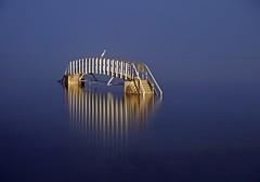 THE BRIDGE TO NOWHERE (kenny barker) Tags: bridge night scotland explore dunbar bridgetonowhere 494 kennybarker