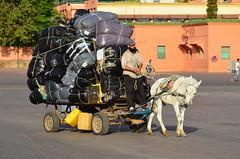 2011.08.26 07.31.24.jpg (Valentino Zangara) Tags: flickr marrakech morocco marrakechtensiftalhaouz marocco ma
