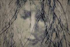 Mystre (Astrid Deschenes) Tags: racine visage crationnumrique artdigital netartii