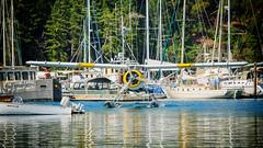 Float plane Arrival (BrettLarson51) Tags: 2016 deerharbor floatplane honeymoon orcasisland sanjuanislands eastsound washington unitedstates