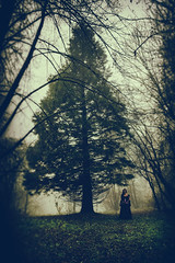 Lost in the Echo (MSPhotography-Art) Tags: landscape nature mist fog outdoor nebel misty natur wolken alb germany
