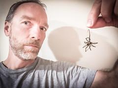 Halloween Candy (Tom Fenske Photography) Tags: halloween spider unusual selfie portrait