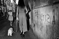Doggy style!! (Baz 120) Tags: candid candidstreet candidportrait city candidface candidphotography contrast street streetphoto streetcandid streetphotography streetphotograph streetportrait streetfaces rome roma romepeople romecandid romestreets monochrome monotone mono blackandwhite bw urban noiretblanc voigtlandercolorskopar21mmf40 life leicam8 leica primelens portrait people unposed italy italia girl grittystreetphotography flashstreetphotography faces flash decisivemoment strangers