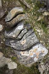 Ah.  Nice rock (barronr) Tags: scotland lochlomondthetrossachsnationalpark benlomond theptarmigan