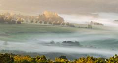 Ein schner Morgen (thorvonasgard) Tags: sonnenaufgang nebel morgens streiflicht sunrise fog morning sidelight landschaft