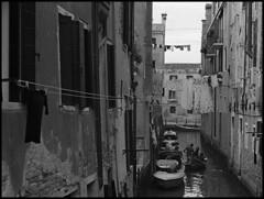 Cannaregio (Jordi Aragon) Tags: nikonf801 nikkor50mmf14d kodaktrix rodinal 150 5secagitationperminute filmrocks 20c 12minutes venezia cannaregio italia