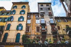 Majestic old Italian buildings (Andrija Zecevic Photography) Tags: canon eos 700d kit lens 1855mm is stm architecture buildings building majestic fantastic lovely green flowers detail details day beautiful italy verona city country travel vacation photo photos photography streets