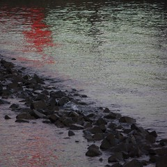 reflection of red and greens (eLeM-O) Tags: rotterdam 2016 december refelction river water riverbanks