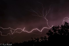Summer thunder storm. (Paul Thirkill) Tags: australia rain clouds thunder thunderstorm sky queensland summer night storm lightning