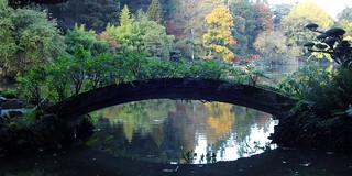 Un petit pont cadrant les reflets des arbres...