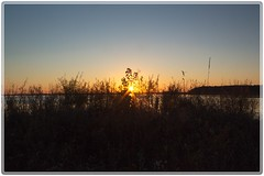 Sunset at Luther Marsh (toddrappitt) Tags: water lake sunsetcolours sunset beautiful vegetarian6 breathtakinglandscapes scenic scenery nature ministryofnaturalresources canada ontario luthermarsh lutherlake grca t4i rebel canon
