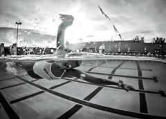 Freedom (b. ellabarger) Tags: freedom tucson tucsonaz tucsonarizona pool water waterwaterwater swim swimming lanes lanelines lineslineslines waterline sky 5050 halfinhalfout gliding blackwhite blackandwhite blackandwhitedrama bw