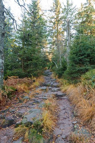 Vers le Wildsee à Baiersbronn