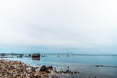 DSC00186 (grahedphotography) Tags: resundsbron resund oresund sweden swe denmark a7ii a7mk2 nature natur water ocean hav bridge beach blackandwhite grey malm limhamn