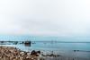 DSC00186 (grahedphotography) Tags: öresundsbron öresund oresund sweden swe denmark a7ii a7mk2 nature natur water ocean hav bridge beach blackandwhite grey malmö limhamn