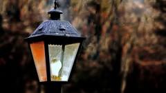 Autumn Light (Bob's Digital Eye) Tags: autumn autumncolour bobsdigitaleye canon canonefs55250mmf456isstm depthoffield flicker flickr lamp light outdoor t3i bokeh