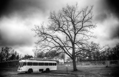 A White Bus (Photons of Days Past) Tags: white bnus bus cumberland alleganycounty maryland canoneos6d blackandwhite