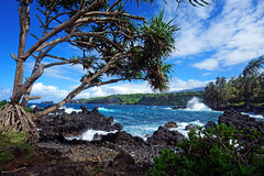 Idyllic Pacific coast (marko.erman) Tags: keanae hana road maui hawaii usa landscape pacific ocean trees water waves sun travel popular pov sony rough peninsula vague ocan coast idyllic