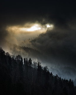 Die Sonne schaut kurz vorbei... (explored)