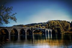 Bridge In Fall (LeWelsch Photo) Tags: wohleibrücke arch wohlei bridge archbridge archedbridge water lake fall autumn viaduct hinterkappelen lakewohlen aare wohlensee bern switzerland rx100m3 rx100iii lewelsch weare500px madeinbern