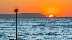 Needles Orange And Blue (nicklucas2) Tags: needles seascape isleofwight solent sun wave sea lighthouse sunrise seagull orange blue