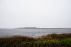 Mist (Maria Eklind) Tags: castle nature slott hr christmas natur sea bosjkloster julmarkand sj vatten december bosjklosterslott water mist dimma sweden skneln sverige se