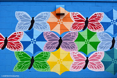 A colorful scene - HSS! (JSB PHOTOGRAPHS) Tags: jsb0767 butterfly brick wall eugeneoregon hss sliderssunday mural