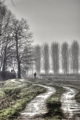 HDR - Fog (MBorsatto61) Tags: parcoagricolosudmilano parco park parc fog nebel niebla hdr italy agricolo sud milano туман canoneos 600d